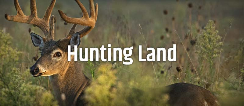 Hunt & Farm Realty LLC Hunting Land