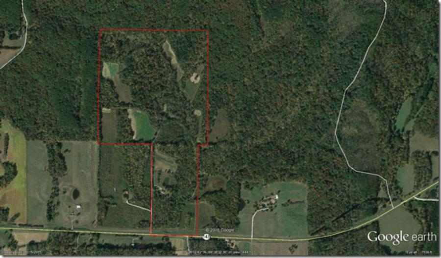 133-acres-pope-county-whitetail-property-for-sale-map.jpg