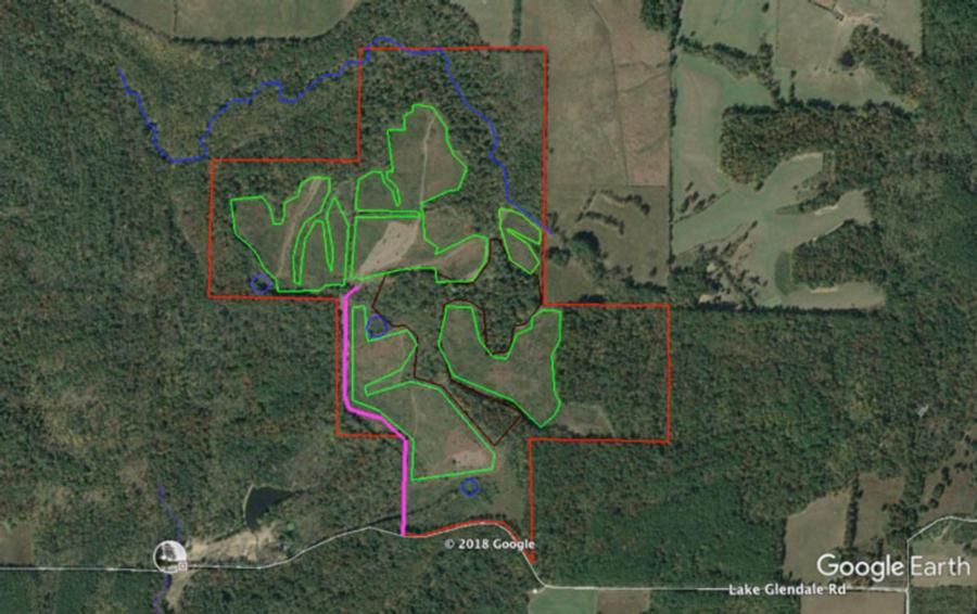 310-acres-pope-county-hunting-land.jpg