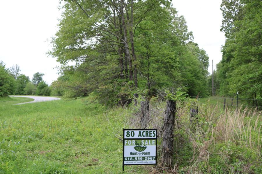 80-acres-waterfowl-property-for-sale-pope-county-21.jpg